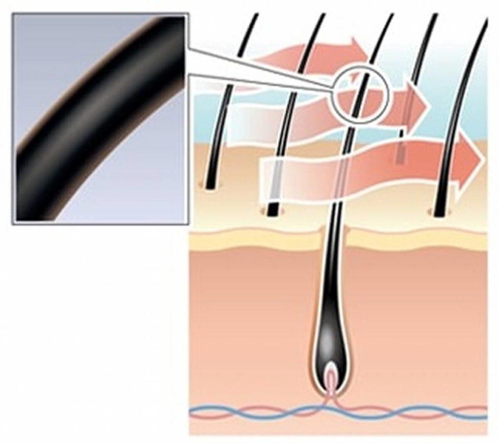 ゴクビプロ・シャンプー&トリートメントの髪のダメージを防ぐ効果