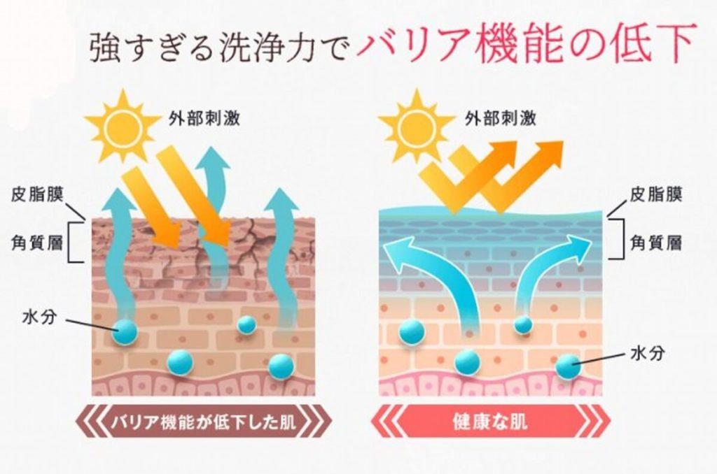 皮脂膜は水分の蒸発を防いだりバリア機能の役割がある